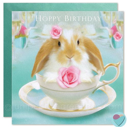Birthday Card Bunny Dwarf Lop 'HOPPY BIRTHDAY'