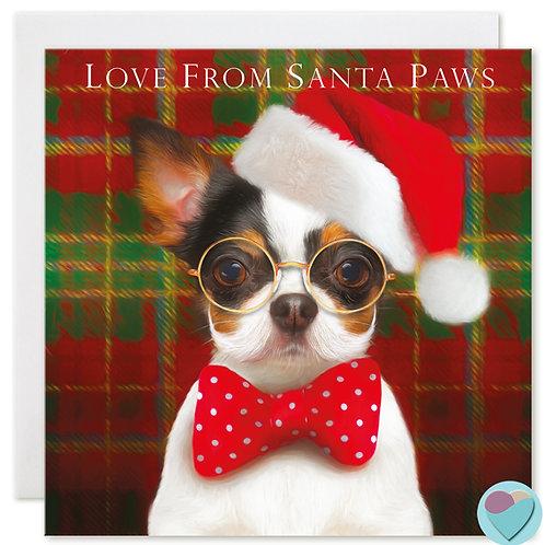 Chihuahua Christmas Card 'LOVE FROM SANTA PAWS'