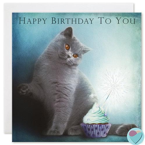British Shorthair Cat Birthday Card 'HAPPY BIRTHDAY TO YOU'