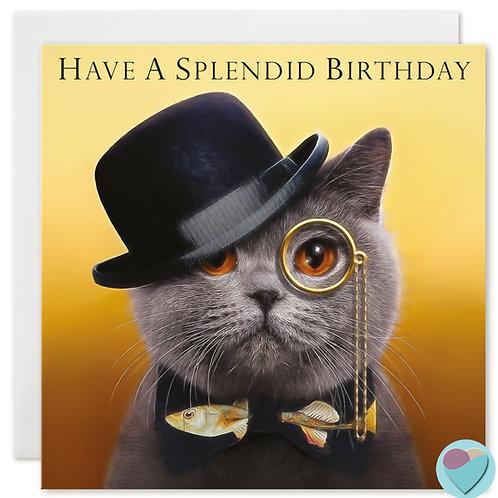 British Shorthair Cat Birthday Card 'HAVE A SPLENDID BIRTHDAY'