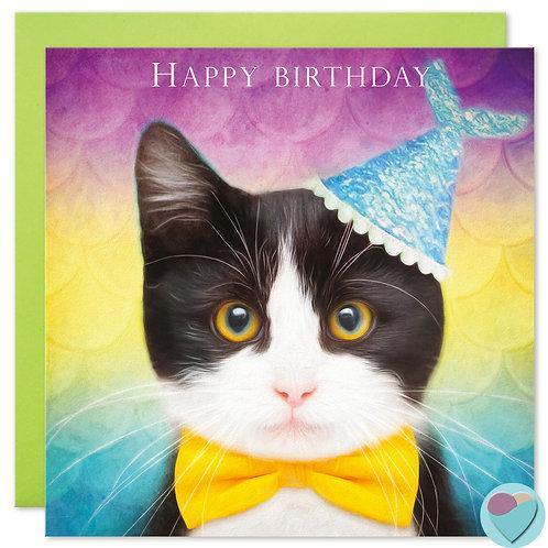 Tuxedo Kitten Birthday Card - HAPPY BIRTHDAY