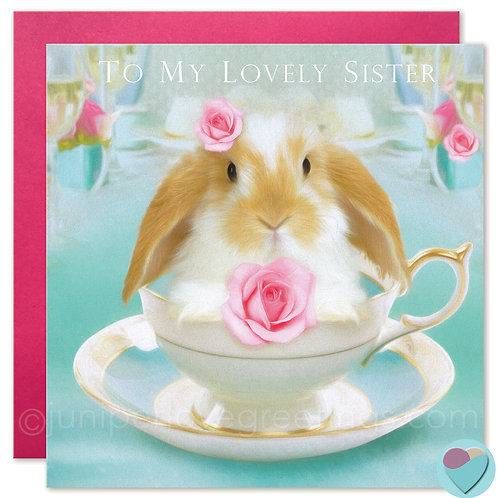 Sister Bunny Birthday Card Dwarf Lop 'TO MY LOVELY SISTER'