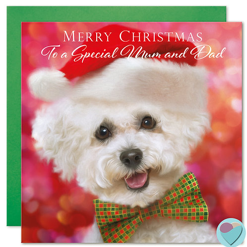 Bichon Frise Christmas Card 'MERRY CHRISTMAS To A Special Mum and Dad