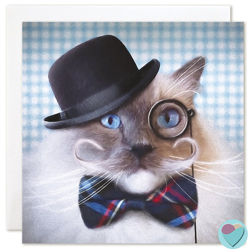 Ragdoll Cat Card BLANK