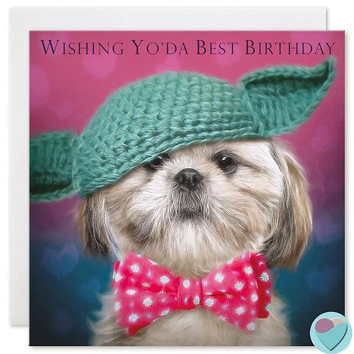 Shih-Tzu Birthday Card 'WISHING YO'DA BEST BIRTHDAY'