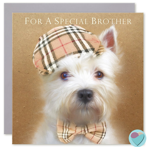 Brother West Highland Terrier Birthday Card 'FOR A SPECIAL BROTHER'