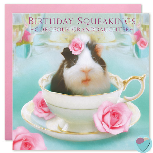 Granddaughter Birthday Card 'BIRTHDAY SQUEAKINGS Gorgeous Granddaughter'