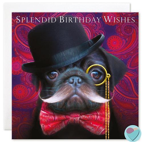 Black Pug Birthday Card  for all 'SPLENDID BIRTHDAY WISHES'