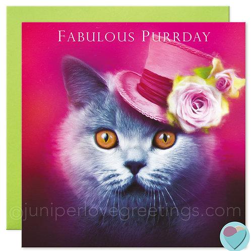 Friend Birthday Card British Blue Cat Lover  'FABULOUS PURRDAY'