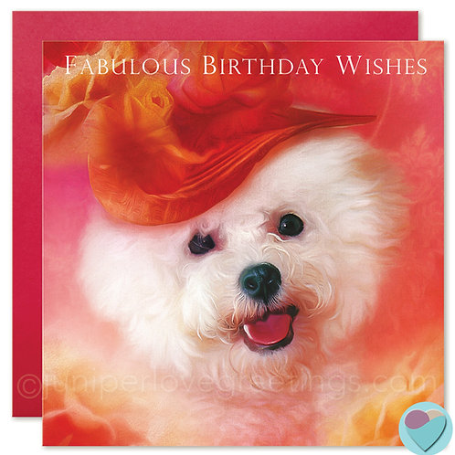 Bichon Frise Birthday Card 'FABULOUS BIRTHDAY WISHES'