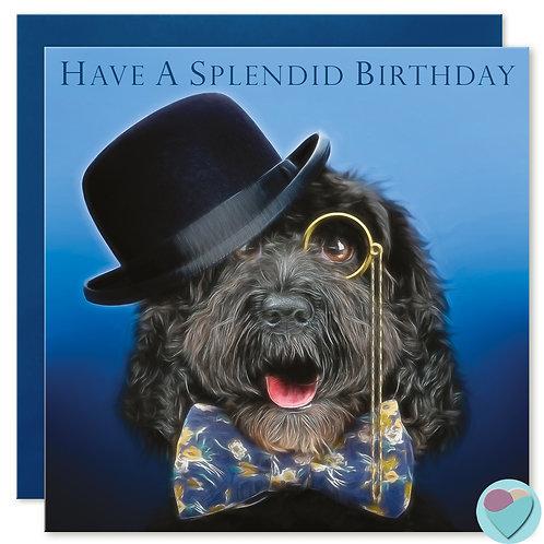 Cockapoo Birthday Card 'HAVE A SPLENDID BIRTHDAY'
