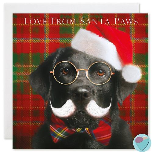 Labrador Christmas Card 'LOVE FROM SANTA PAWS'