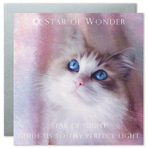 Ragdoll Cat Christmas Card UK 'STAR OF WONDER STAR OF NIGHT'