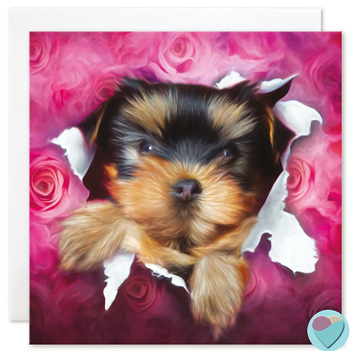 Yorkshire Terrier BLANK Card