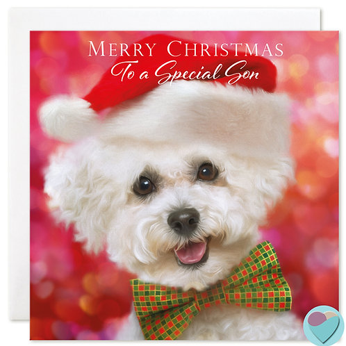 Son Bichon Frise Christmas Card 'MERRY CHRISTMAS To A Special Mum and Dad