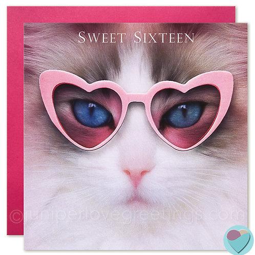 16th Birthday Card for Girls Ragdoll Cat 'SWEET SIXTEEN'