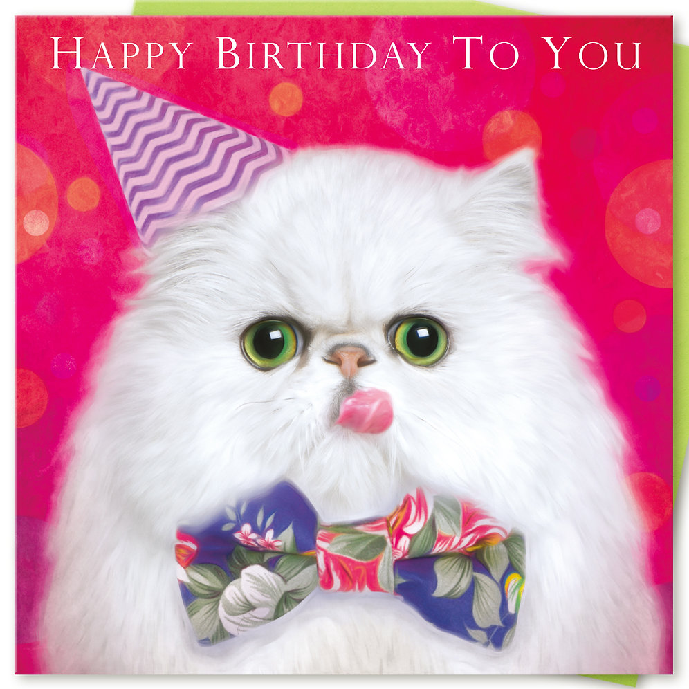 persian cat birthday card 'happy birthday to you'  cat
