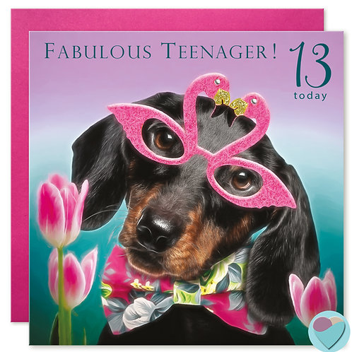 13th Birthday Card 'FABULOUS TEENAGER! 13 TODAY'