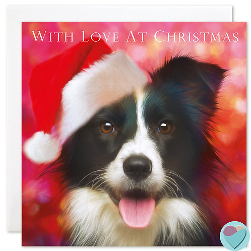 Border Collie Christmas Card 'WITH LOVE AT CHRISTMAS'