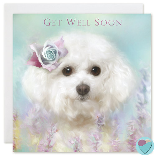 Bichon Frise Greeting Card 'GET WELL SOON'