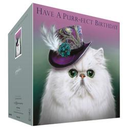 Persian Cat Birthday Card