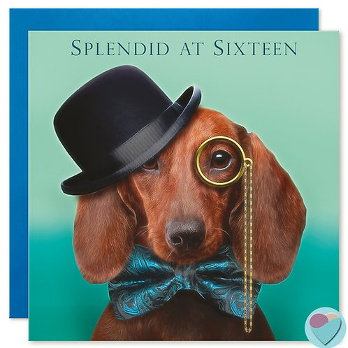 Boys 16th Birthday Card 'SPLENDID AT SIXTEEN'
