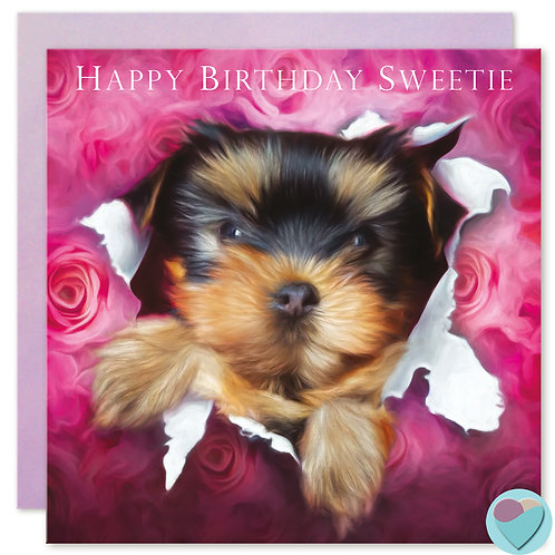 Yorkshire Terrier Birthday Card 'HAPPY BIRTHDAY SWEETIE'