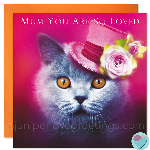 Mum Birthday Card British Blue Shorthair Cat Lover 'MUM YOU ARE SO LOVED'