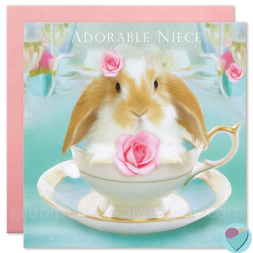 Niece Bunny Birthday Card Dwarf Lop 'ADORABLE NIECE'