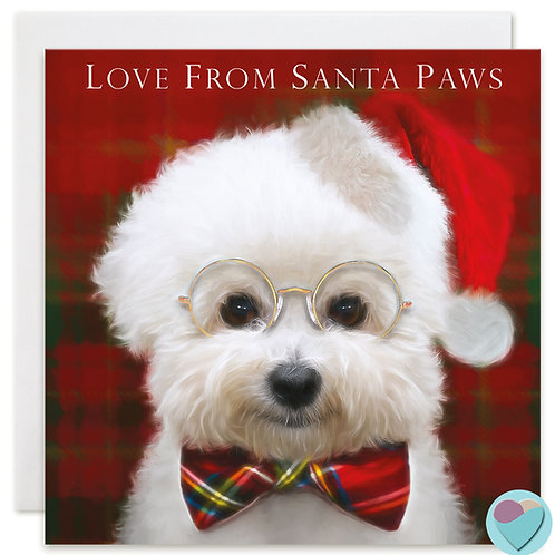 Bichon Frise Christmas Card 'LOVE FROM SANTA PAWS'