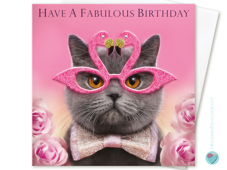 New British Shorthair Cat Birthday Card by Juniperlove Greetings