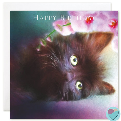 Black Kitten Birthday Cards 'HAPPY BIRTHDAY'
