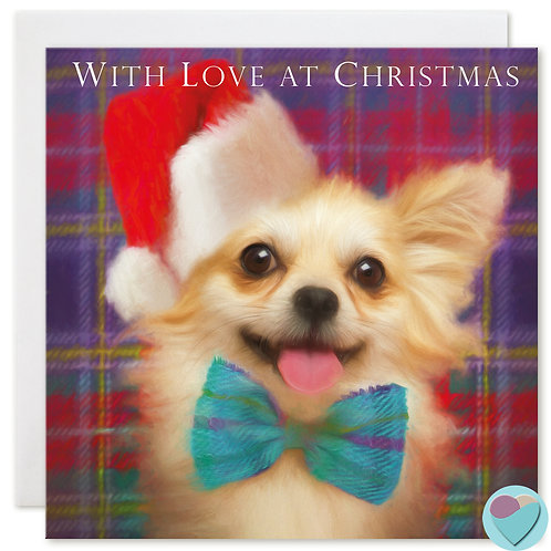 Chihuahua Christmas Card 'WITH LOVE AT CHRISTMAS'