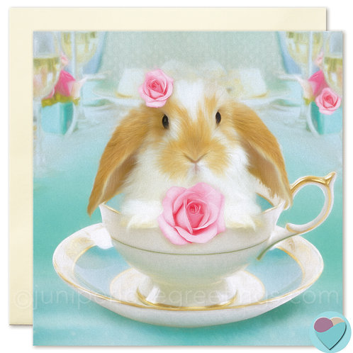 Bunny Card Dwarf Lop UK For Any Occasion BLANK