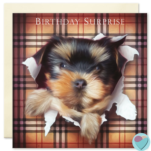 Yorkshire Terrier Birthday Card 'BIRTHDAY SURPRISE'