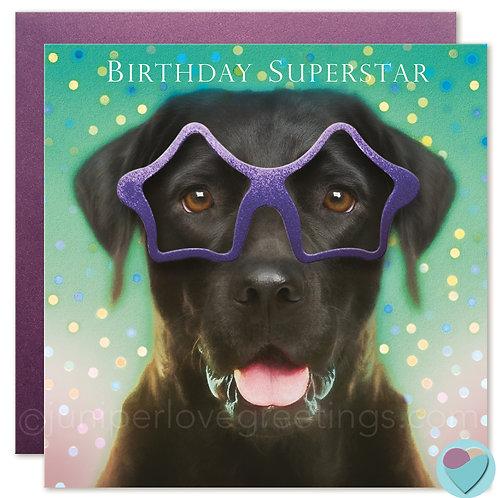 Black Labrador Birthday Card UK  'BIRTHDAY SUPERSTAR'