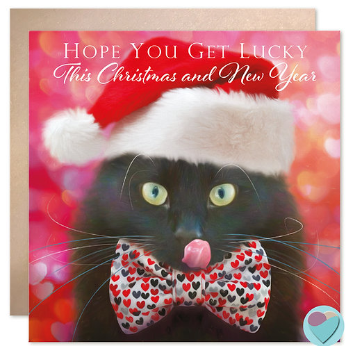 Black Cat Christmas Card 'HOPE YOU GET LUCKY This Christmas and New Year'