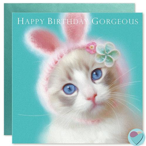 Ragdoll Kitten Birthday Card 'HAPPY BIRTHDAY GORGEOUS'