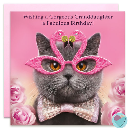 Wishing a Gorgeous Granddaughter a Fabulous Birthday - BRITISH BLUE CAT CARD