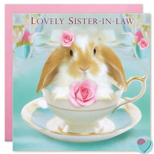 Sister-in-law Birthday Card 'LOVELY SISTER-IN-LAW'