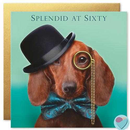 60th Birthday Card 'SPLENDID AT SIXTY'