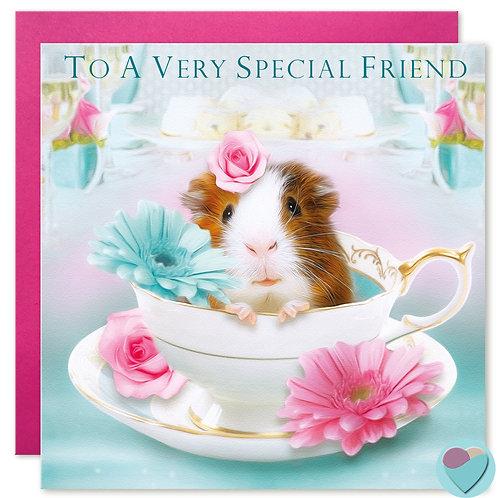 Friend Birthday Card 'TO A VERY SPECIAL FRIEND'