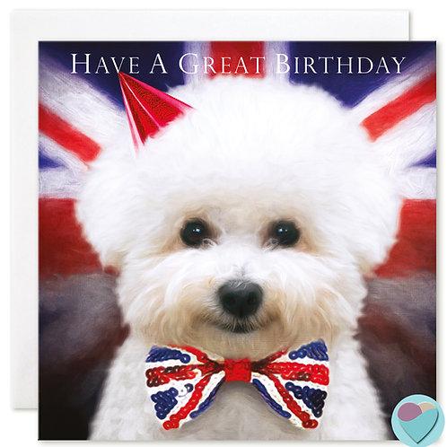 Birthday Card Bichon Frise 'HAVE A GREAT BIRTHDAY'