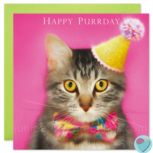 Brown Tabby Cat Birthday Card UK 'HAPPY PURRDAY'