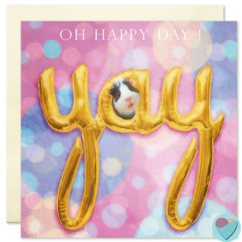 Guinea Pig Birthday Card 'YAY OH HAPPY DAY'