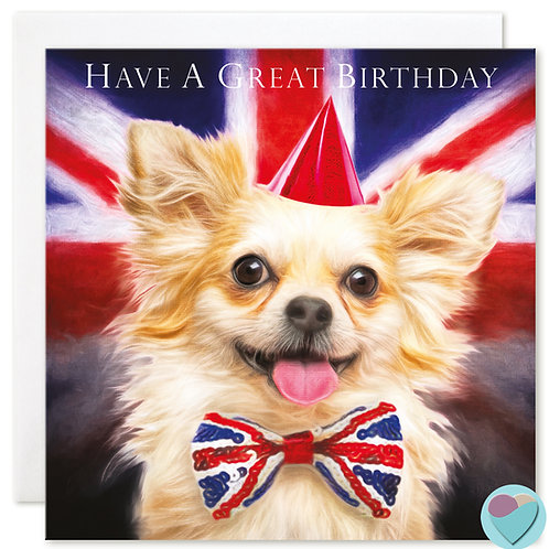Chihuahua Birthday Card 'HAVE A GREAT BIRTHDAY'