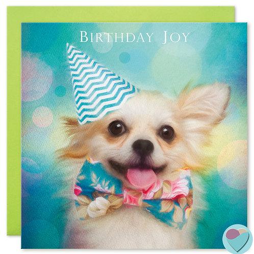 Chihuahua Birthday Card 'BIRTHDAY JOY'