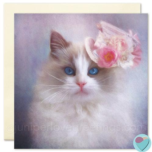 Ragdoll Cat Card UK Greetings BLANK