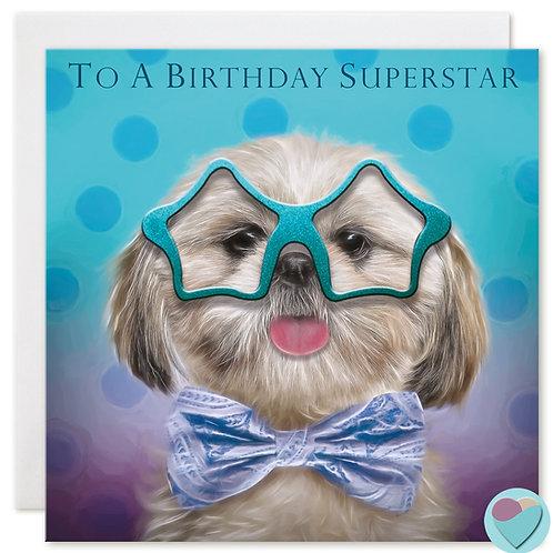Shih-Tzu Birthday Card 'TO A BIRTHDAY SUPERSTAR'