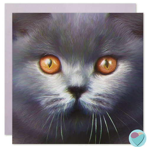 British Shorthair Cat Card